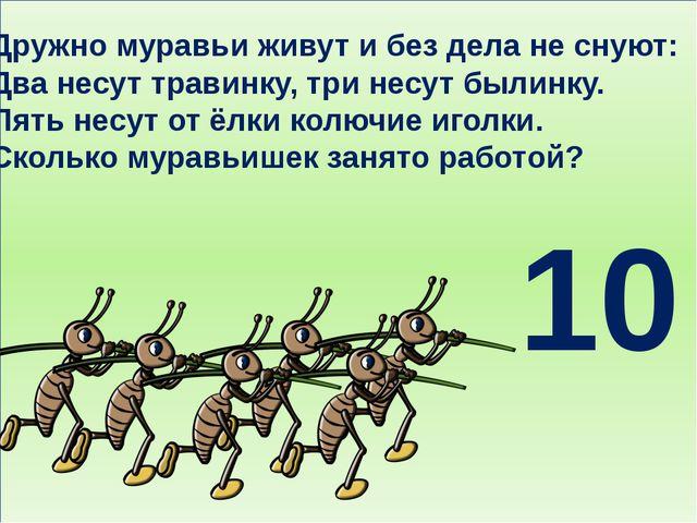 Дружно муравьи живут и без дела не снуют: Два несут травинку, три несут были...
