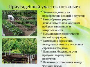 Приусадебный участок позволяет: Экономить деньги на приобретении овощей и фру