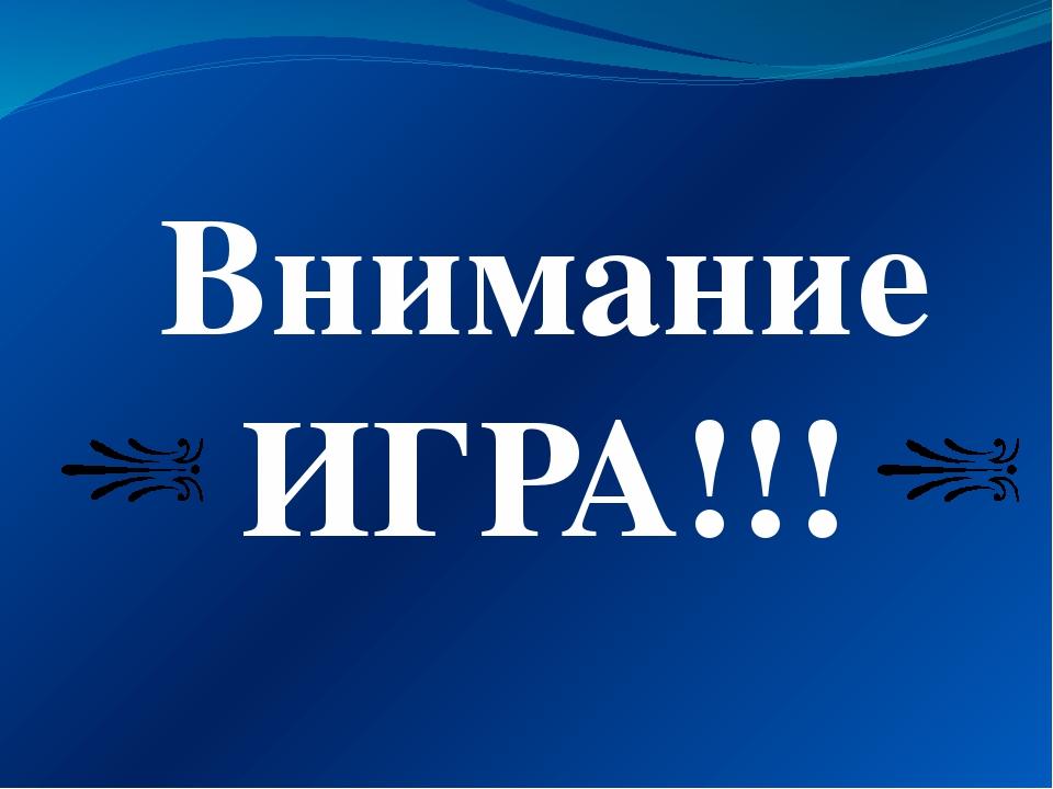 Внимание ИГРА!!!
