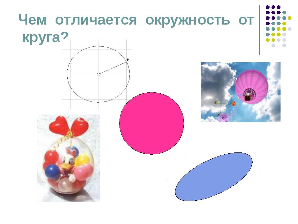 Чем отличается окружность от круга?