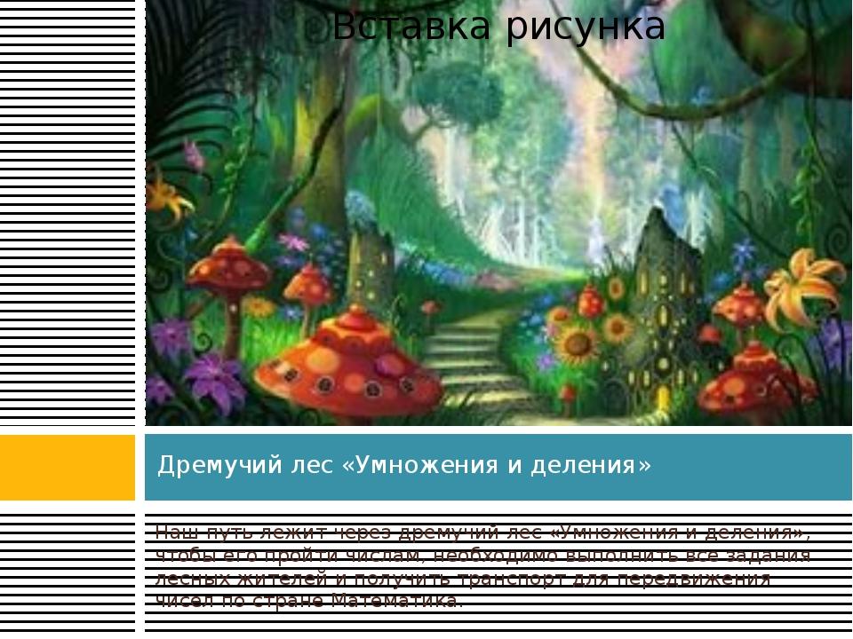 Дремучий лес «Умножения и деления» Наш путь лежит через дремучий лес «Умножен...