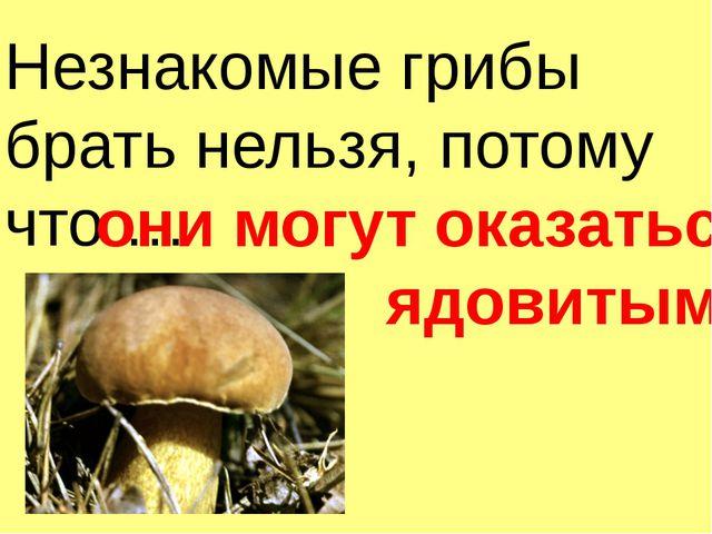 Незнакомые грибы брать нельзя, потому что … они могут оказаться ядовитыми