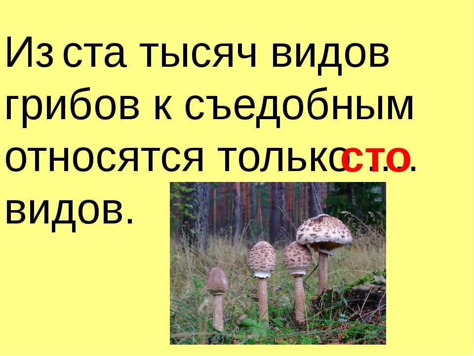 Из ста тысяч видов грибов к съедобным относятся только …. видов. сто