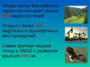 Флора Ханты-Мансийского округа насчитывает свыше 800 видов растений. Открыто