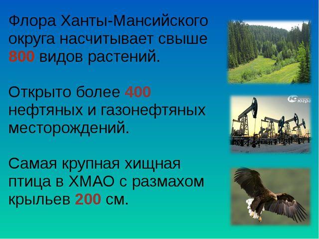 Флора Ханты-Мансийского округа насчитывает свыше 800 видов растений. Открыто...