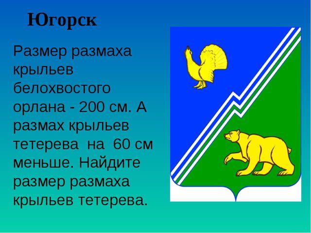 Югорск Размер размаха крыльев белохвостого орлана - 200 см. А размах крыльев...