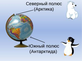 Северный полюс (Арктика) Южный полюс (Антарктида)