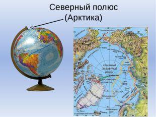 Северный полюс (Арктика)