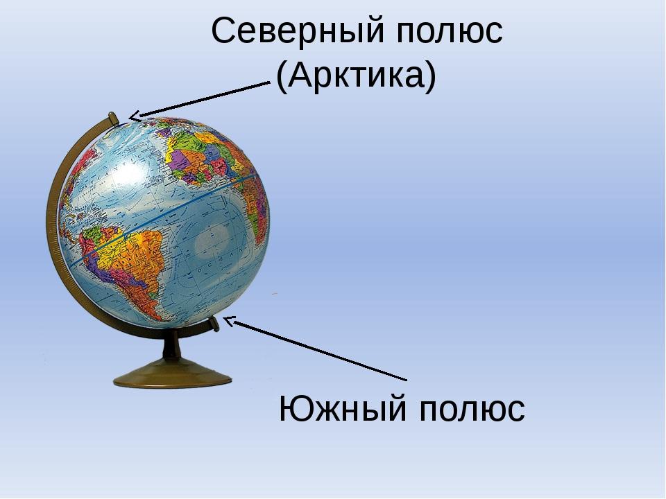 Северный полюс (Арктика) Южный полюс