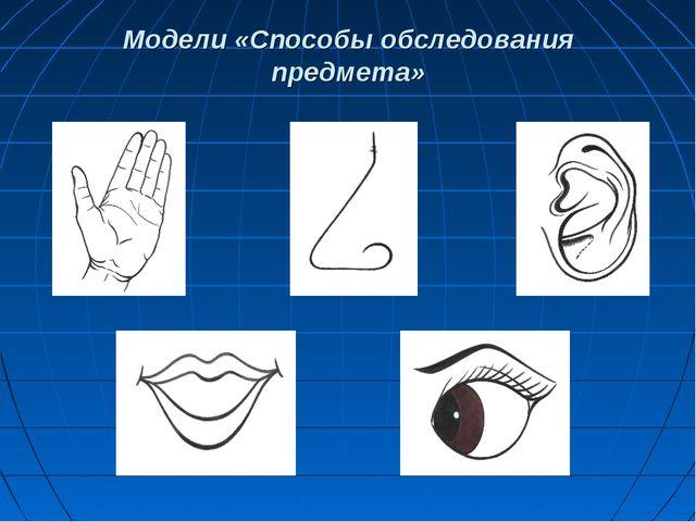 Модели «Способы обследования предмета»