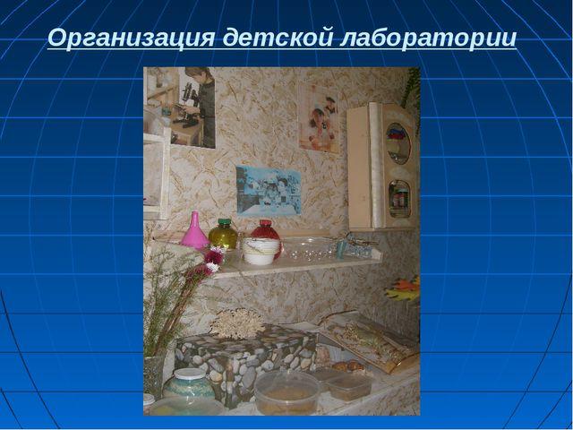Организация детской лаборатории