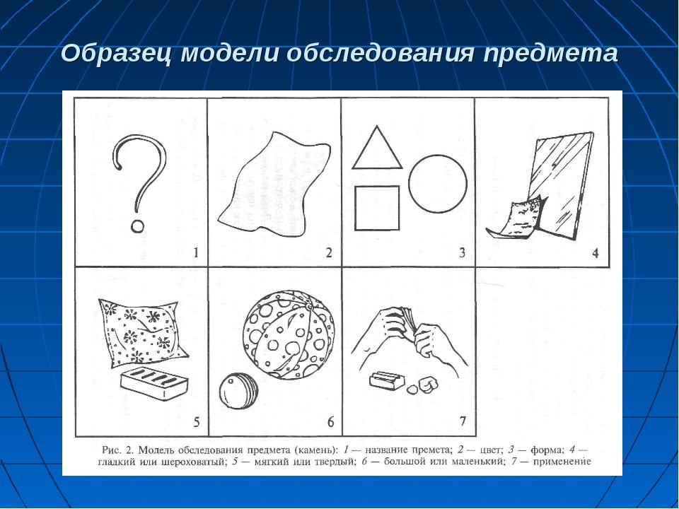 Образец модели обследования предмета