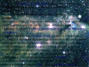 Козеро́г—зодиакальное созвездиеюжного полушария неба. Наиболее благоприятн