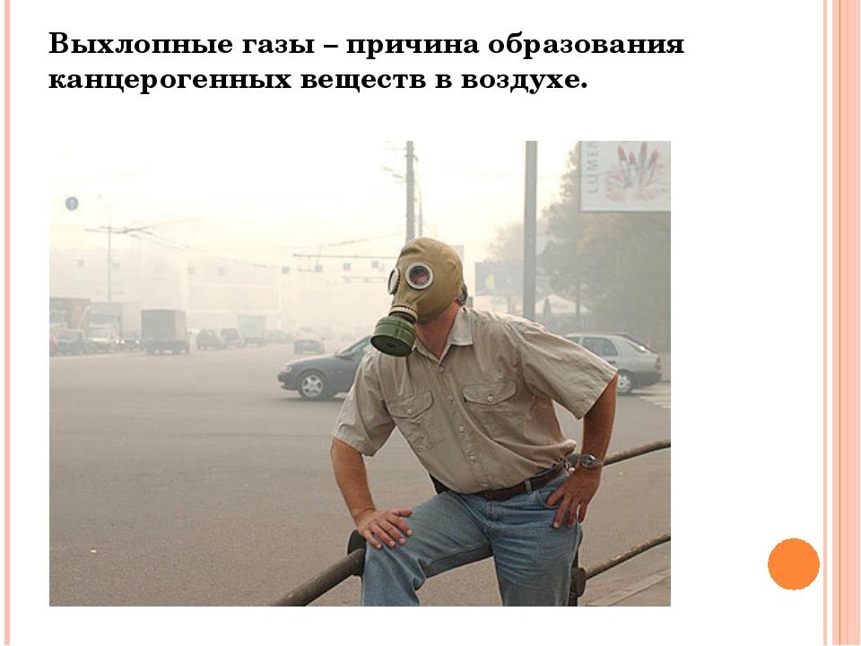 Выхлопные газы – причина образования канцерогенных веществ в воздухе.