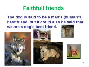 Faithfull friends 	The dog is said to be a man's (human's) best friend, but i