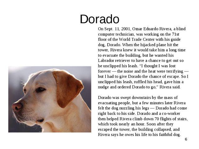 Dorado * On Sept. 11, 2001, Omar Eduardo Rivera, a blind computer technician...