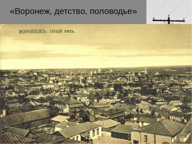 «Воронеж, детство, половодье»