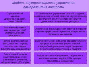 Стратегический уровень Директор, пед.совет, Совет ОЭиИР Стратегическое управл