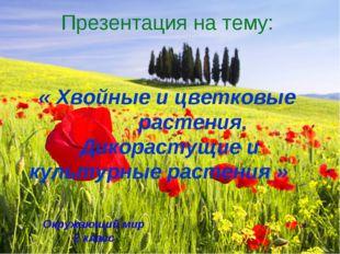 Презентация на тему: « Хвойные и цветковые растения. Дикорастущие и культурны