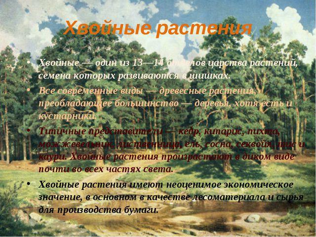 Хвойные растения Хвойные — один из 13—14 отделов царства растений, семена кот...