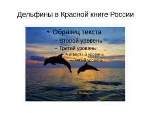 Дельфины в Красной книге России