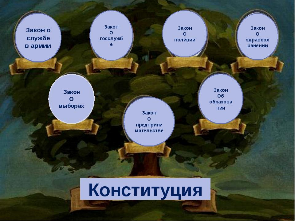 Конституция Закон О выборах Закон о службе в армии Закон О госслужбе Закон О...