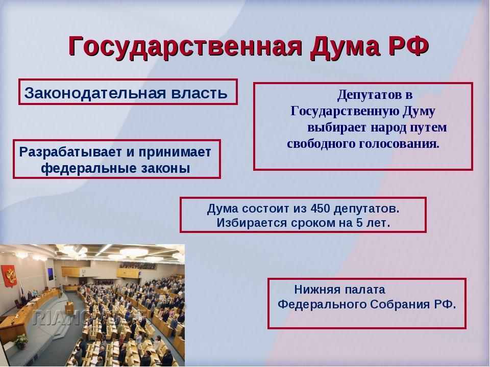 Государственная Дума РФ Законодательная власть Нижняя палата Федерального Соб...