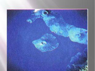 16. Определите, происхождение изображенных островов. Приведите примеры таких