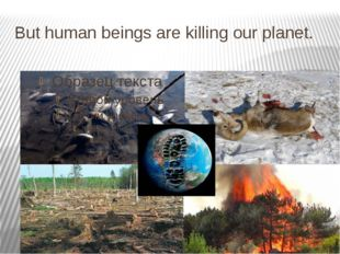 But human beings are killing our planet.