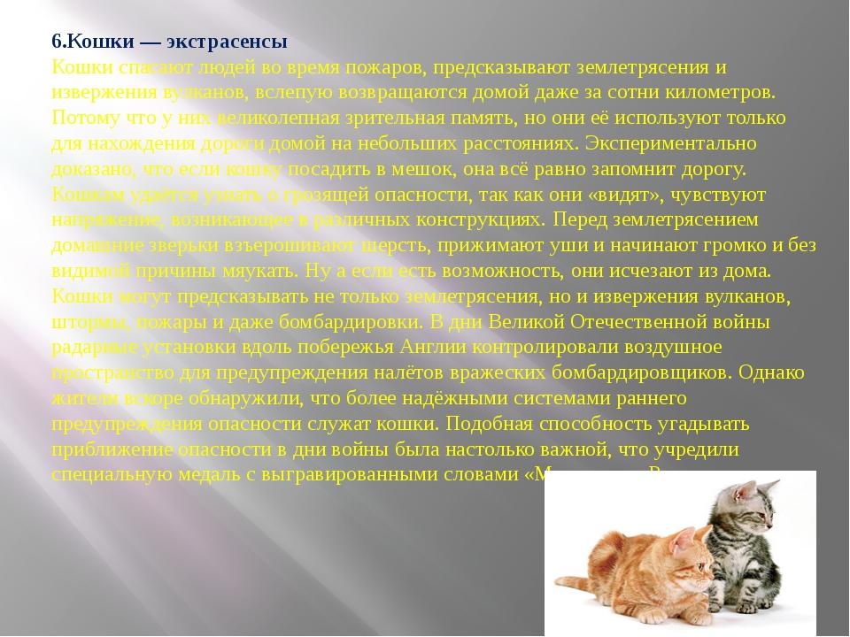 6.Кошки — экстрасенсы Кошки спасают людей во время пожаров, предсказывают зе...