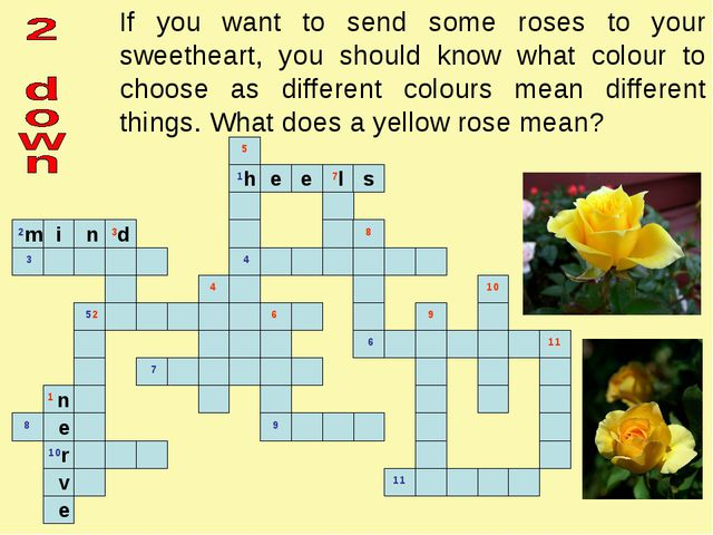 If you want to send some roses to your sweetheart, you should know what colou...