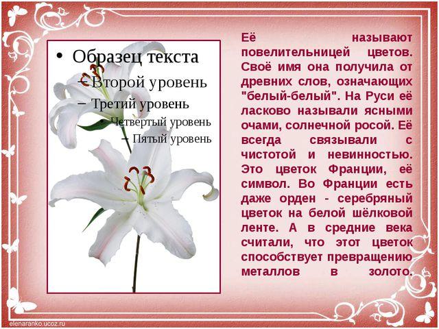 Её называют повелительницей цветов. Своё имя она получила от древних слов, оз...