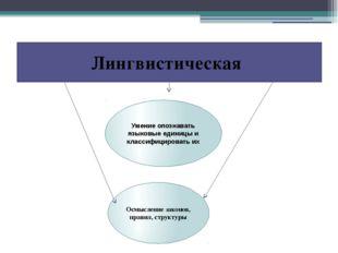 Лингвистическая Умение опознавать языковые единицы и классифицировать их Осмы