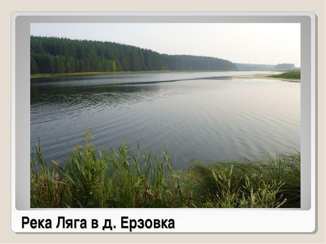 Река Ляга в д. Ерзовка