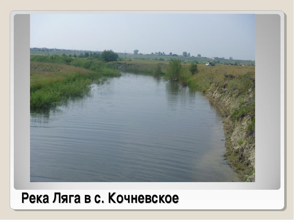 Река Ляга в с. Кочневское