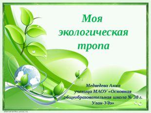 Моя экологическая тропа Медведева Анна ученица МАОУ «Основная общеобразовател