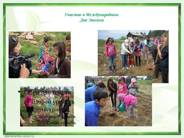 Участие в Международном Дне Эколога