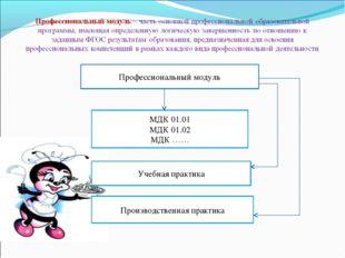 Профессиональный модуль МДК 01.01 МДК 01.02 МДК …… Учебная практика Производс