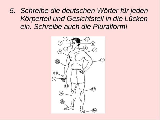 Schreibe die deutschen Wörter für jeden Körperteil und Gesichtsteil in die Lü...