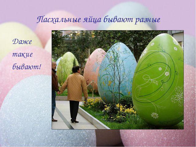 Пасхальные яйца бывают разные Даже такие бывают!
