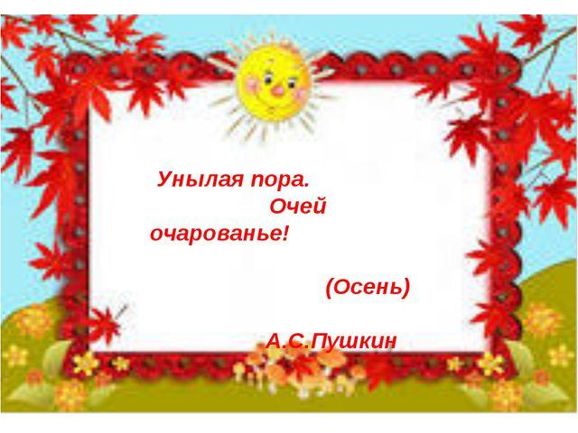 Унылая пора. Очей очарованье!  (Осень) А.С.Пушкин