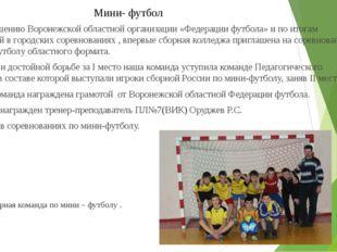 Мини- футбол По приглашению Воронежской областной организации «Федерации футб