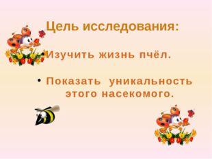 Цель исследования: Показать уникальность этого насекомого. Изучить жизнь пчёл.