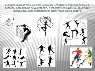В общеобразовательных организациях Спортивно-оздоровительную деятельность мож