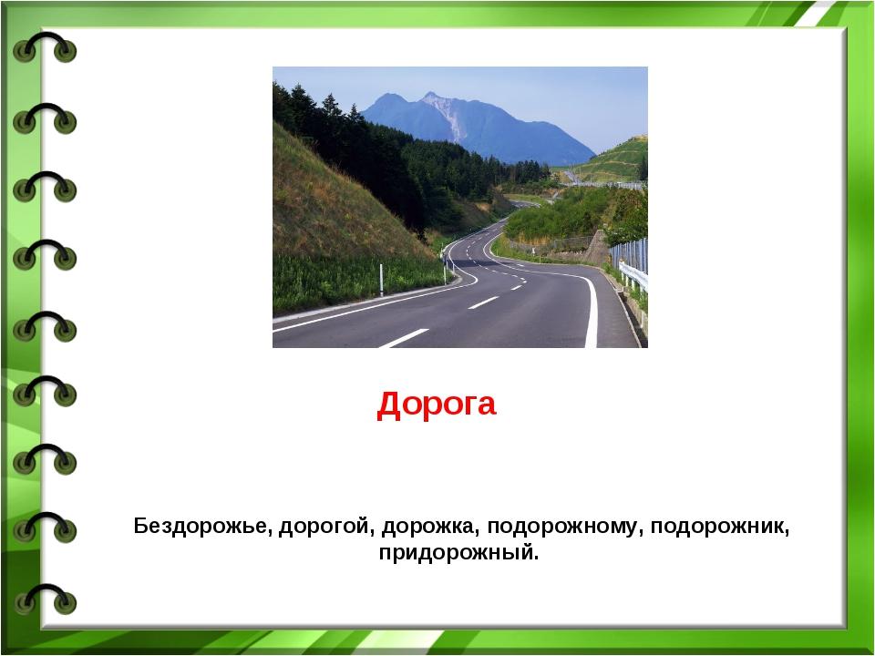 Дорога Бездорожье, дорогой, дорожка, подорожному, подорожник, придорожный.
