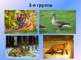 3-я группа