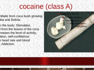 cocaine (class A) ORIGIN: Made from coca bush growing in Colombia and Bolivi