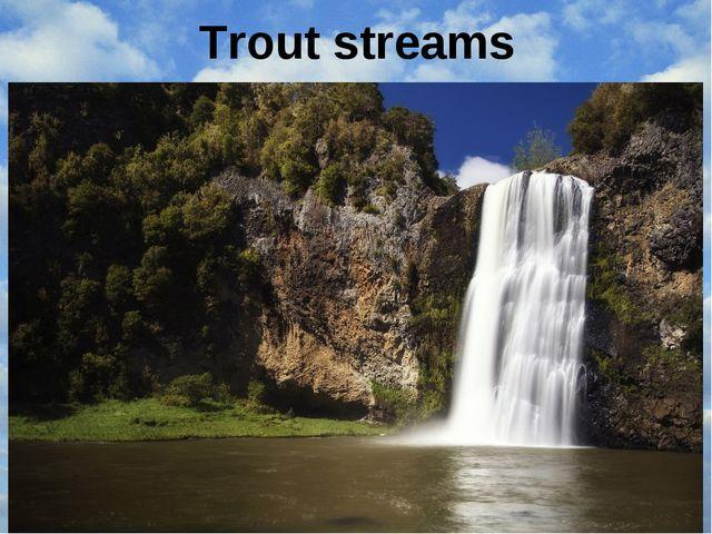 Trout streams