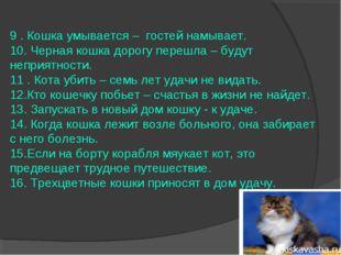 9 . Кошка умывается – гостей намывает. 10. Черная кошка дорогу перешла – буду