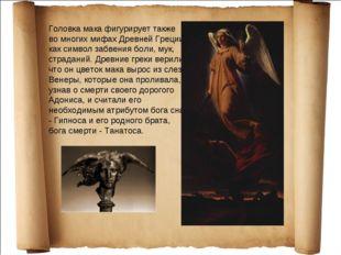 Головка мака фигурирует также во многих мифах Древней Греции как символ забве